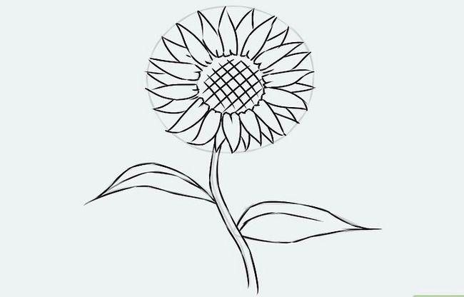 Titel afbeelding Draw a Flower Step 17