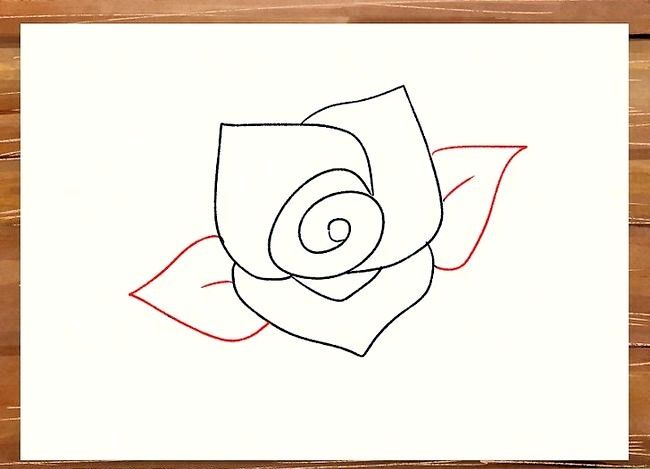 Titel afbeelding Draw a Rose Step 16