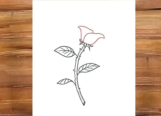 Titel afbeelding Draw a Rose Step 25