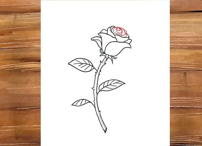Titel afbeelding Draw a Rose Step 27