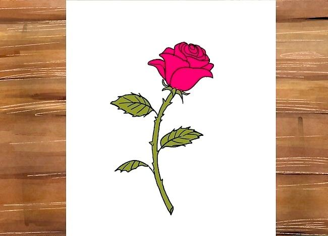 Titel afbeelding Draw a Rose Step 29