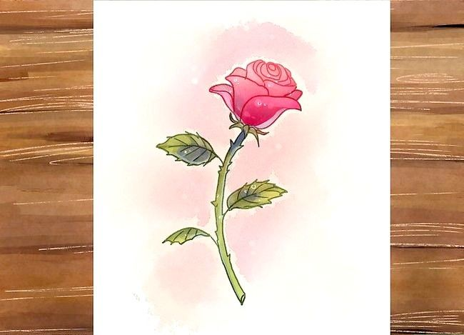 Titel afbeelding Draw a Rose Step 30