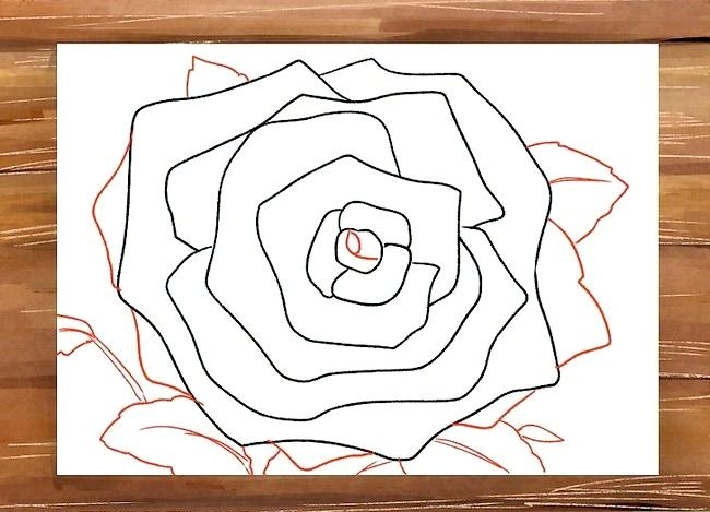 Titel afbeelding Draw a Rose Step 9