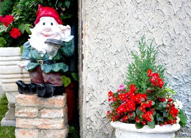 Titel afbeelding Design an Exotic Garden Step 4