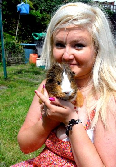 Titel afbeelding Guinea Pigs 15