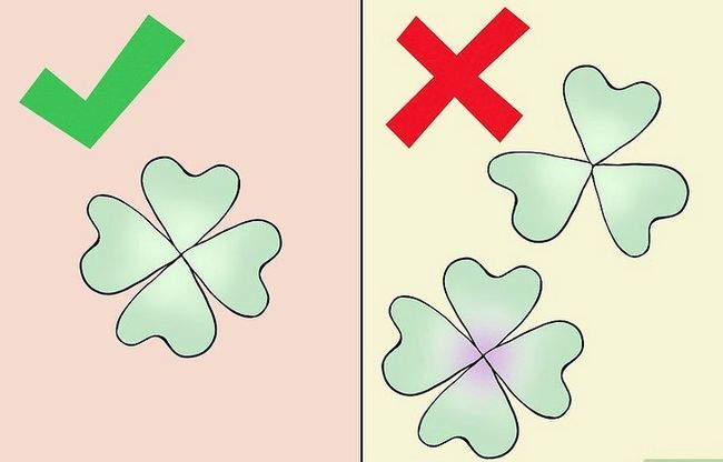 Titel afbeelding Find a Four Leaf Clover Step 4