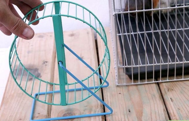 Titel afbeelding Choose Good Cages for Hamsters Step 6