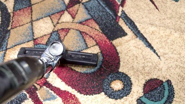 Hoe tapijtkevers te vermijden