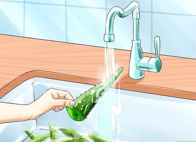 Titel afbeelding Extract Aloe Vera Step 3