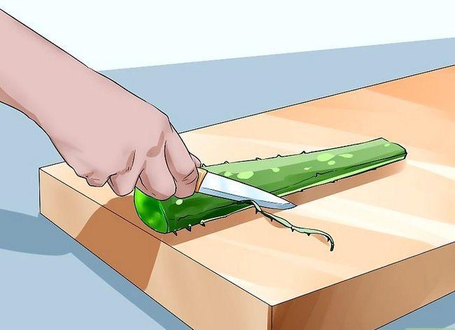 Titel afbeelding Extract Aloe Vera Step 5
