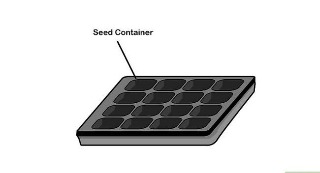 Titel afbeelding Germinate Seeds Step 4