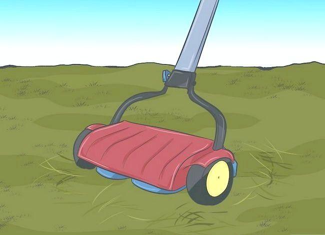 Hoe mulch met een maaier te maken