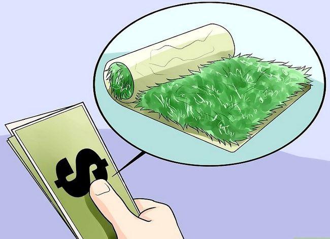Titel afbeelding Grow a Lawn Gemakkelijk Stap 10
