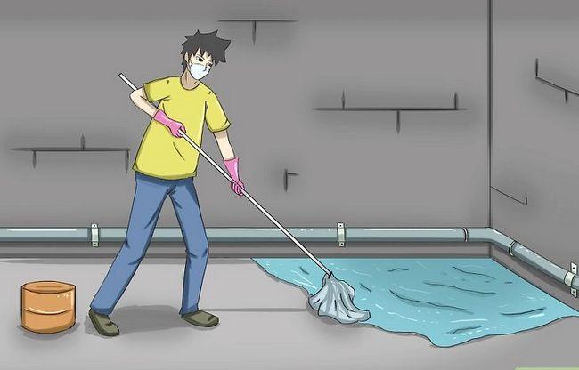 Titel afbeelding Make a Basement Smell Better Step 3