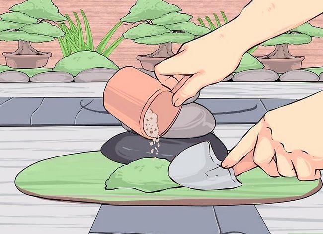Titel afbeelding Build a Japanese Garden Step 10