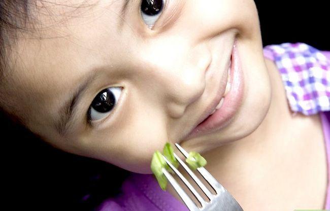Titel afbeelding Get More Iron in Childs Diet Step 20
