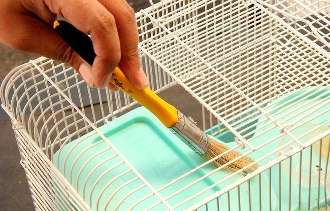 Titel afbeelding Keep Hamsters Happy Step 6