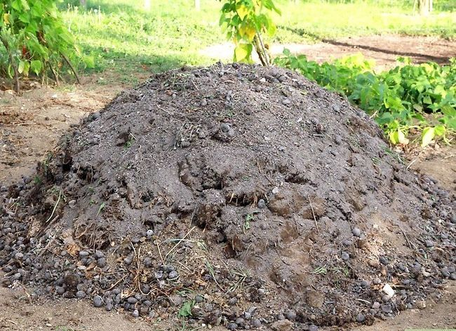 Titel afbeelding Maintain a Compost Heap Step 1