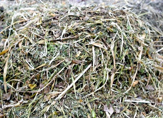 Titel afbeelding Maintain a Compost Heap Step 8
