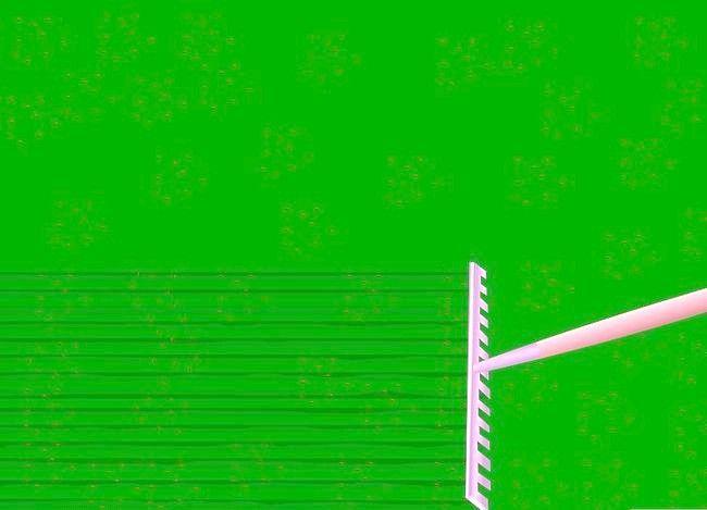 Titel afbeelding Seed a Lawn Step 19