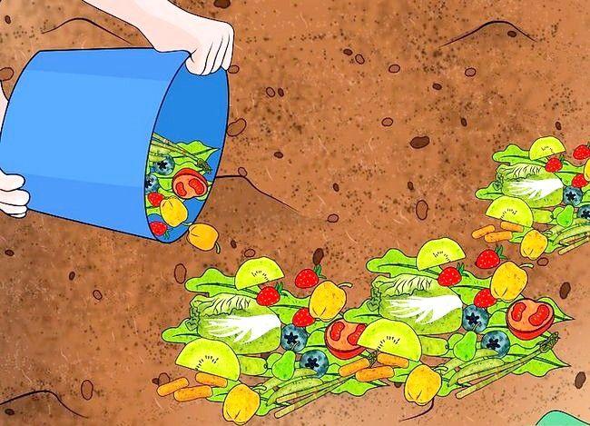 Titel afbeelding Prepare the Soil for a Vegetable Garden Step 8