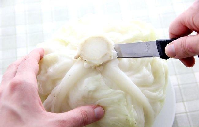 Titel afbeelding Make Stuffed Cabbage Step 2