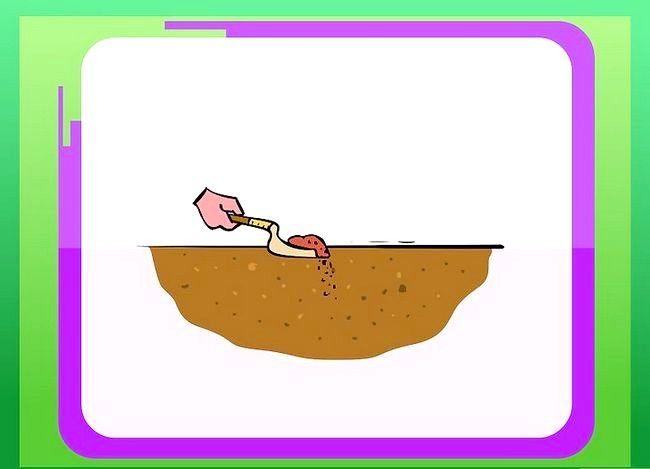 Titel afbeelding Prepare Soil for Roses Step 4