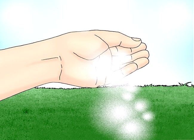 Titel afbeelding Remove White Clover from a Lawn Step 4