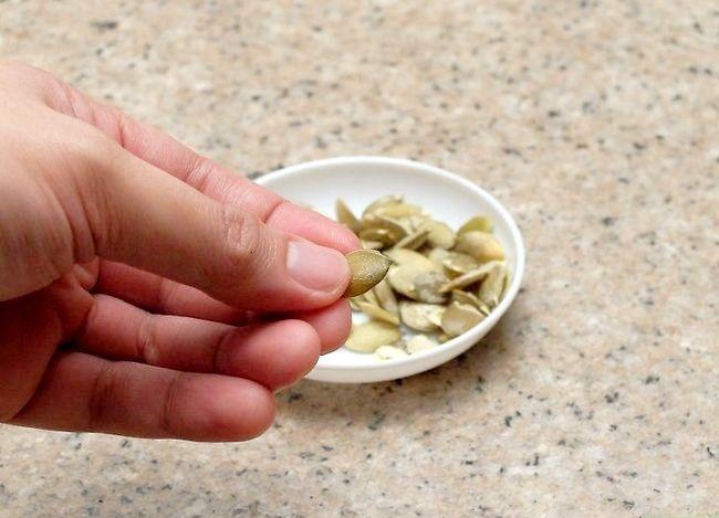 Titel afbeelding Shell Pumpkin Seeds Step 9