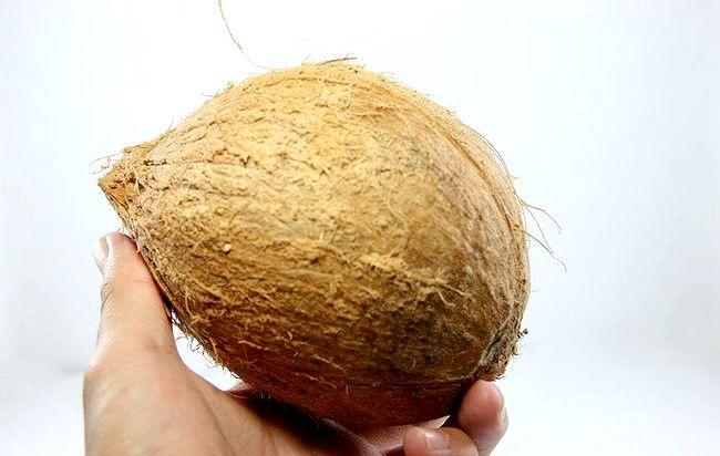 Hoe kokosnoot raspen