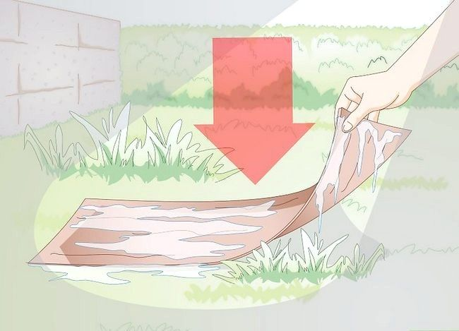 Titel afbeelding Gather Earthworms Step 5