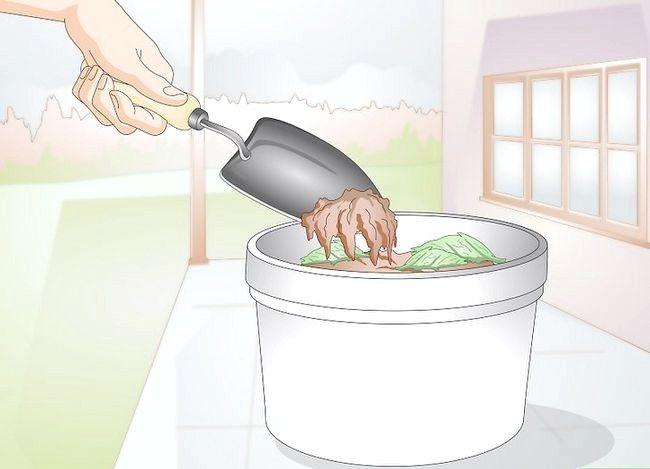 Titel afbeelding Gather Earthworms Step 7
