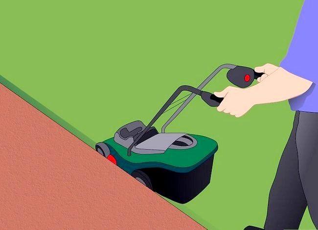 Hoe de randen van het gazon te trimmen zonder een edger