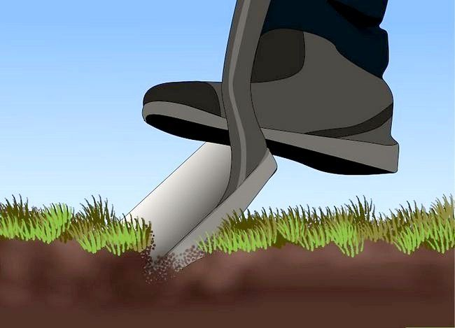 Titel afbeelding Edge a Lawn Without a Edger Stap 7