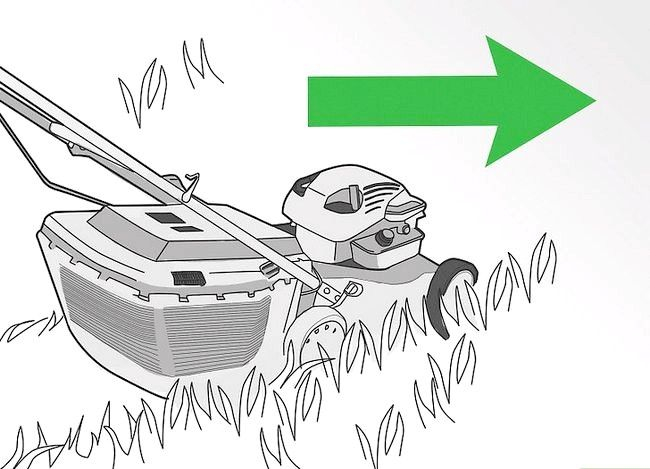Titel afbeelding Water Your Lawn Efficiently Step 1