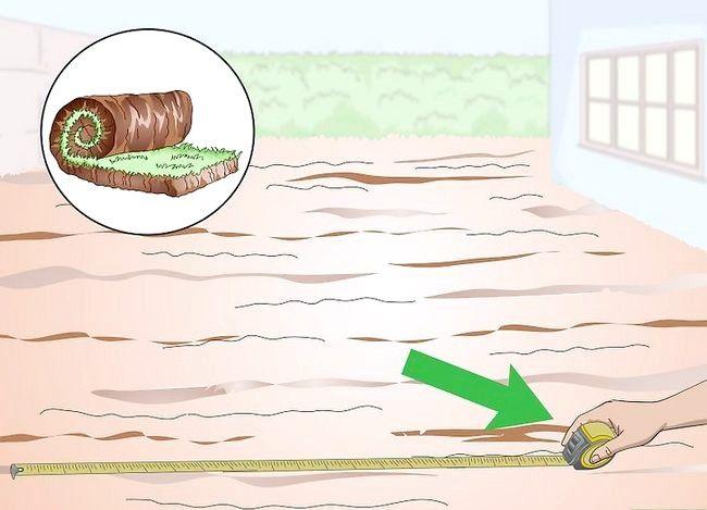 Titel afbeelding Plant Bermuda Grass Step 11