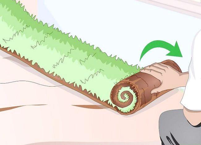 Titel afbeelding Plant Bermuda Grass Step 13