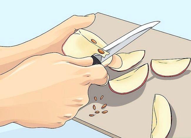 Titel afbeelding Plant Apple Seeds Step 1