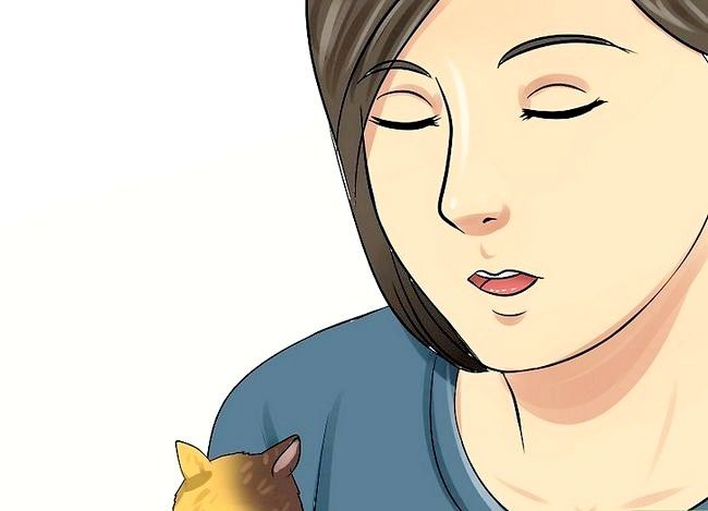 Titel afbeelding Handle a Hamster Without Being Bitten Step 13