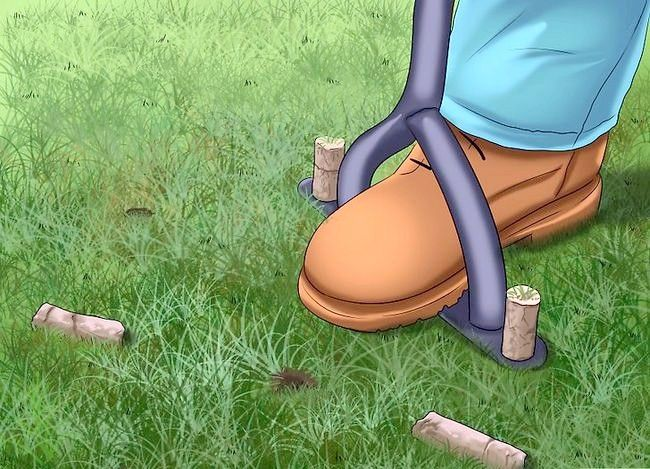 Titel afbeelding Get and Maintain a Healthy Lawn Step 11