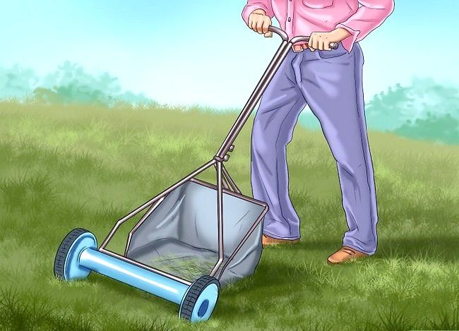 Titel afbeelding Get and Maintain a Healthy Lawn Step 8