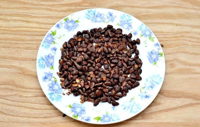 Titel afbeelding Roast Pine Nuts Step 15