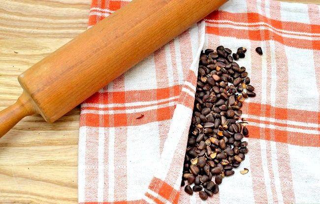 Titel afbeelding Roast Pine Nuts Step 16