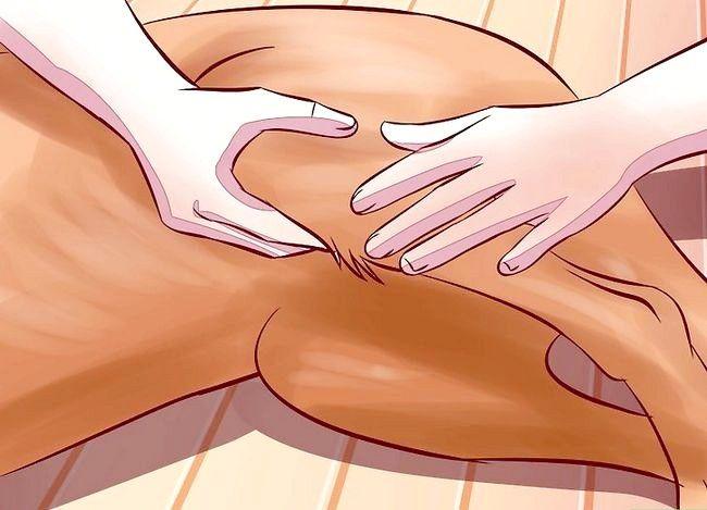 Titel afbeelding Treat Arthritis in Dogs Step 9