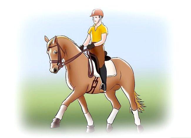 Hoe te joggen op een paard met geheven draf