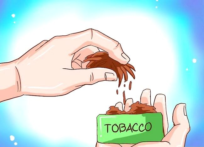 Titel afbeelding Dip Smokeless Tobacco Step 3