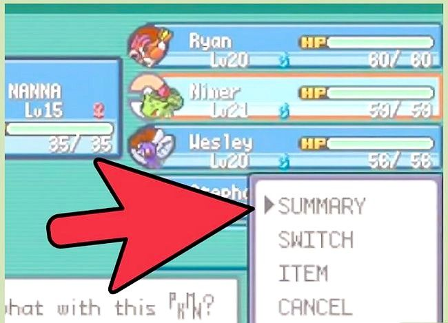 Titel afbeelding Beat the First Gym Leader in Pokémon FireRed en LeafGreen Step 2